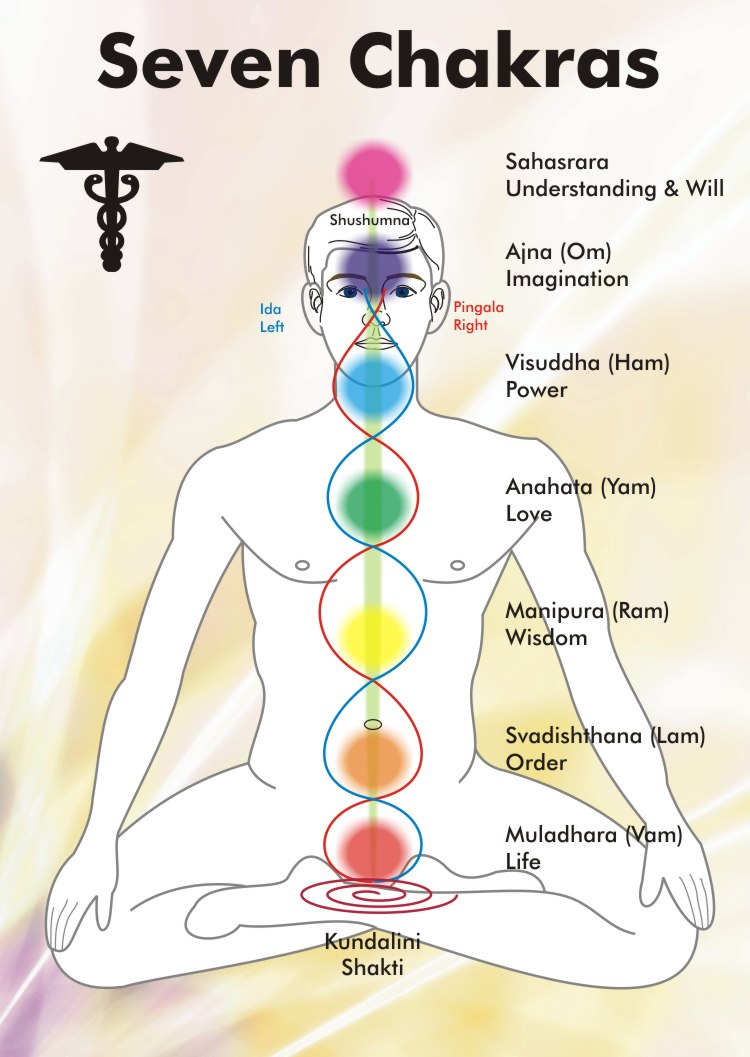 Seeing Is Knowing The Brow Chakra Sister Spirit